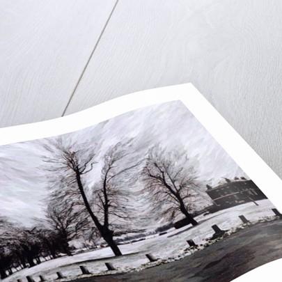 Westgrove, Looking Towards Blackheath by Ellen Golla