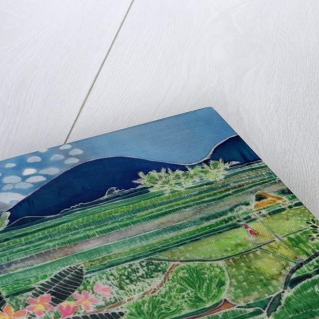 Lovina Ricefields with Lilies and Frangipani, Bali by Hilary Simon