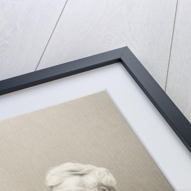 Henry Peter Brougham by John Jabez Edwin Paisley Mayall
