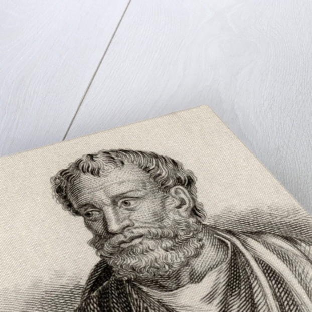 Theophrastus by J.W. Cook
