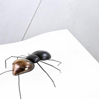 The Ant, 2006 by Lawrie Simonson