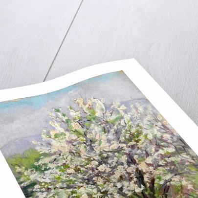 Almond blossom by Arthur Haythorne Studd