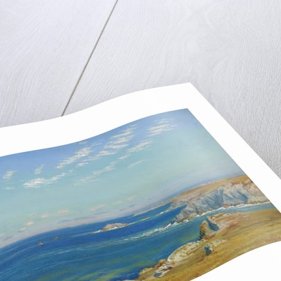 Newquay Headland, Cornwall by Arthur Hughes