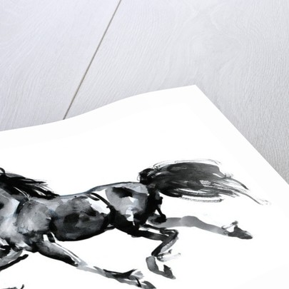 Flying Friesian by Mark Adlington