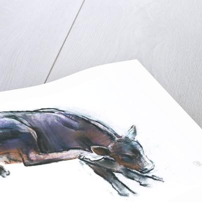 Scratching Calf by Mark Adlington