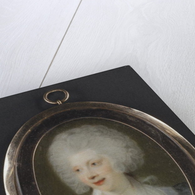 Portrait of Queen Charlotte, 1790 by Richard Collins