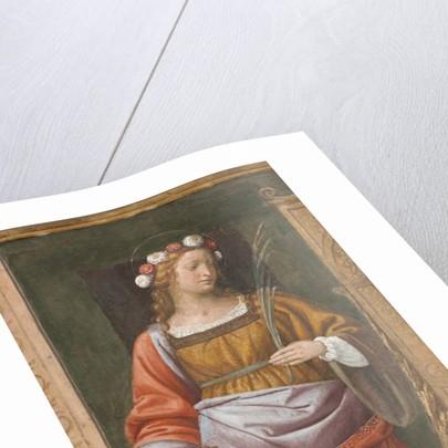 Saint Rose by Bernardino Luini
