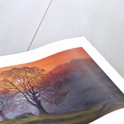 Autumn mists by Margo Starkey