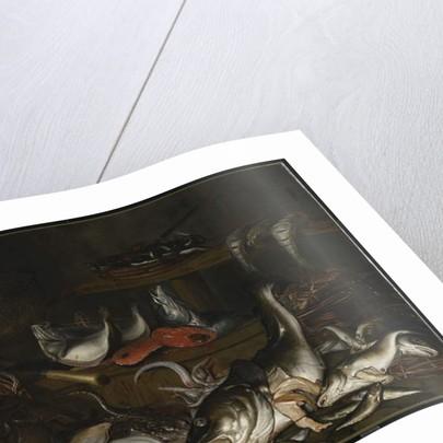 Still Life: Fish by Johannes Fabritius