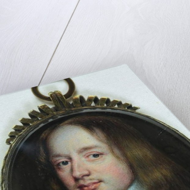 The Hon William Pierrepont by Richard Gibson