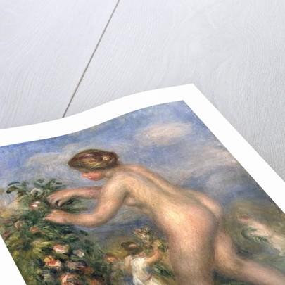 Female nude picking flowers by Pierre Auguste Renoir
