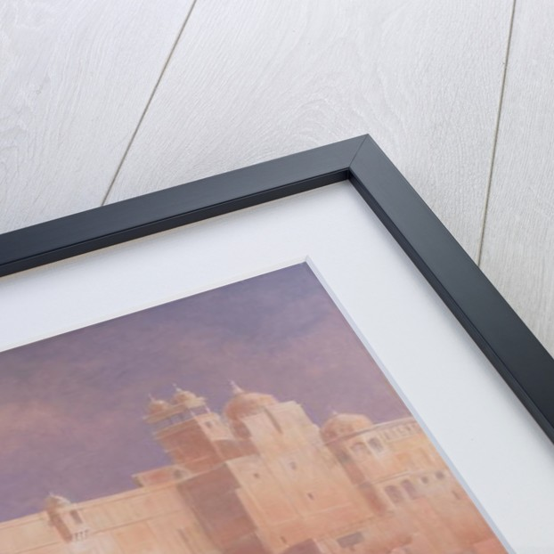 Amber Fort, Jaipur by Lincoln Seligman