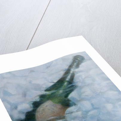 Champagne on ice by Lincoln Seligman