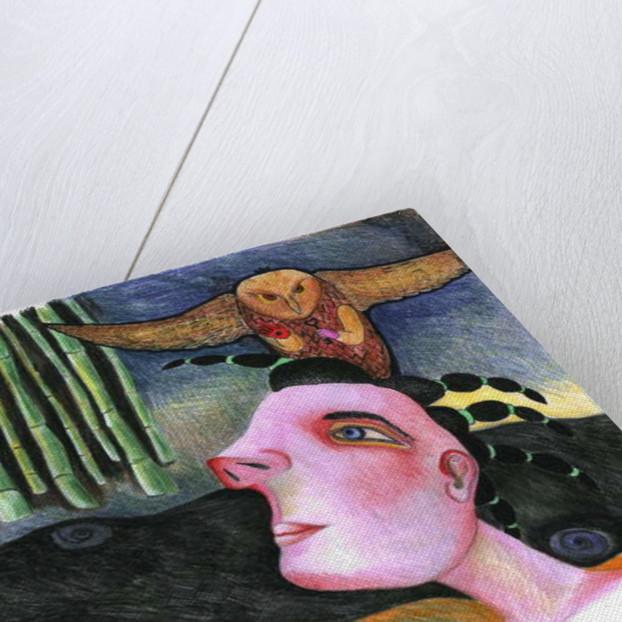 Memories from the future by Zanara/ Sabina Nedelcheva-Williams