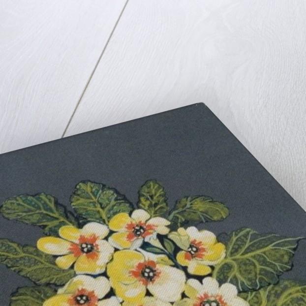 The Yellow Primrose by Joan Thewsey
