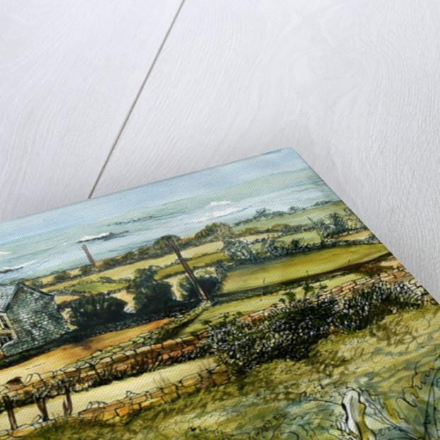 Farm and Sea, L'Etacq, 2012 by Joan Thewsey