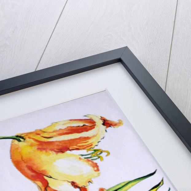 Orange Lilies 1, 1985 by Joan Thewsey