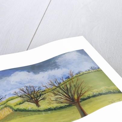 Suffolk Spring Sky by Joan Thewsey