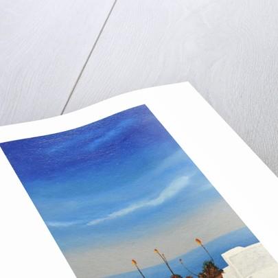 Santorini 8, 2010 by Trevor Neal