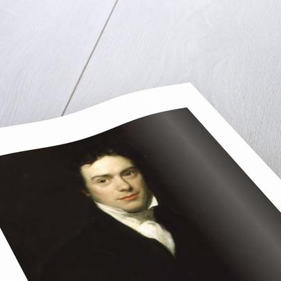 Portrait of Michael Faraday Esq 1830 by Henry William Pickersgill