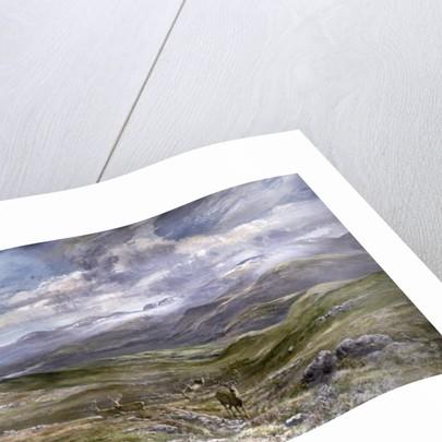 Kinrara, Aviemore, Scotland, 1988 by Tim Scott Bolton