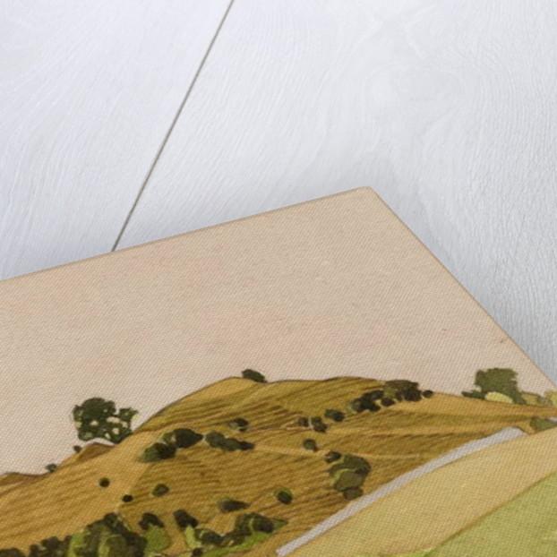 Dryslyn, Carmarthenshire by Anna Teasdale