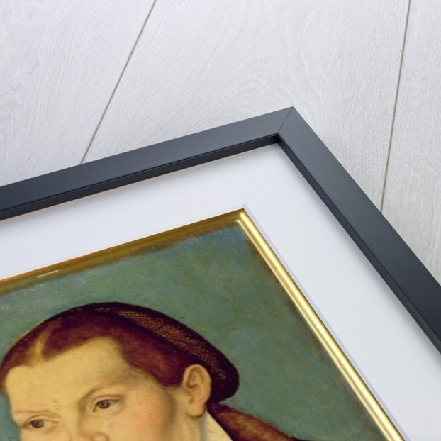 Double portrait of Martin Luther and Katherin von Bora by Lucas