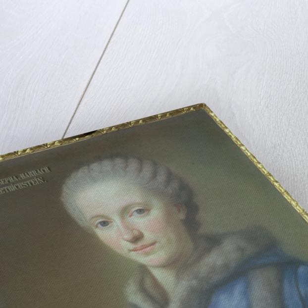 Countess Maria Josepha von Harrach, wife of Count Guido von Harrach by French School