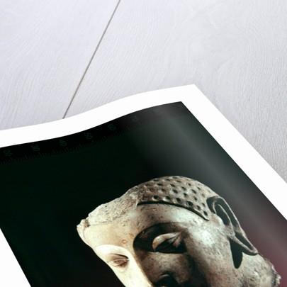 Head of Buddha by Afghan School
