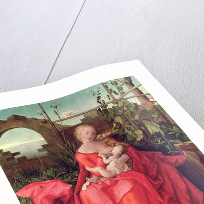 Virgin and Child 'Madonna with the Iris by Albrecht Durer or Duerer