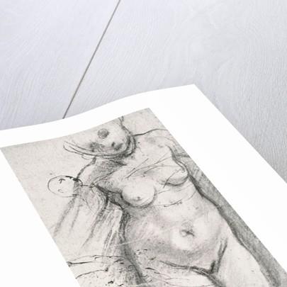 Knee Length Study of a Nude Woman by Jacopo Pontormo