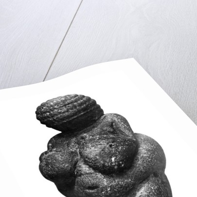 The Venus of Willendorf, side view of female figurine, Gravettian culture, Upper Paleolithic Period, c.30000-18000 BC by Prehistoric