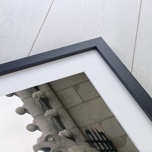 Gargoyles on the balustrade of the Grande Galerie by Eugene Emmanuel Viollet-le-Duc