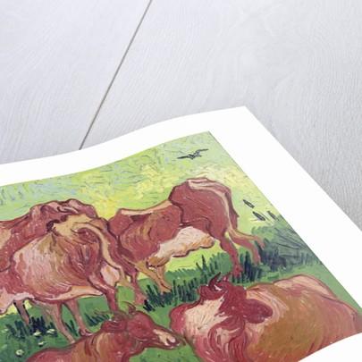 Cows by Vincent van Gogh