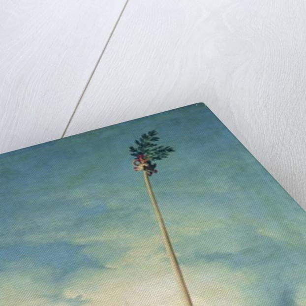 The Greasy Pole by Francisco Jose de Goya y Lucientes
