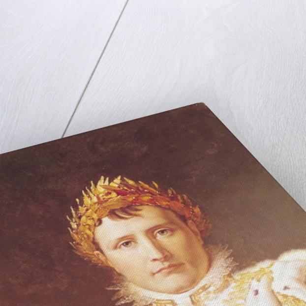 Napoleon I in Coronation Robes by Francois Pascal Simon