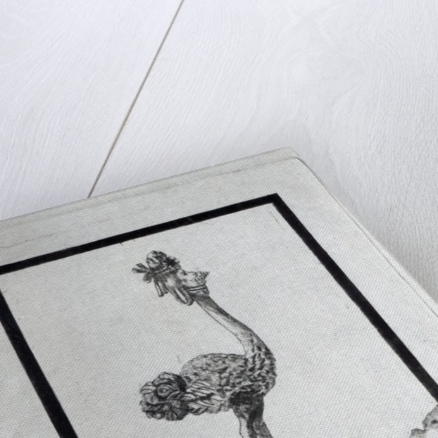 'La Poulle d'Autriche' by French School