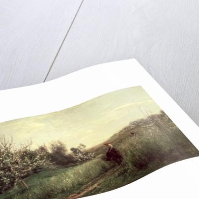 Spring by Charles Francois Daubigny
