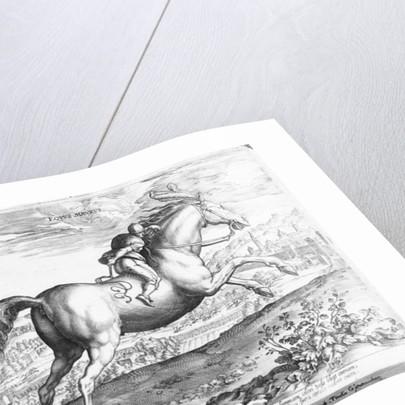 Equus Maurus by Jan van der Straet