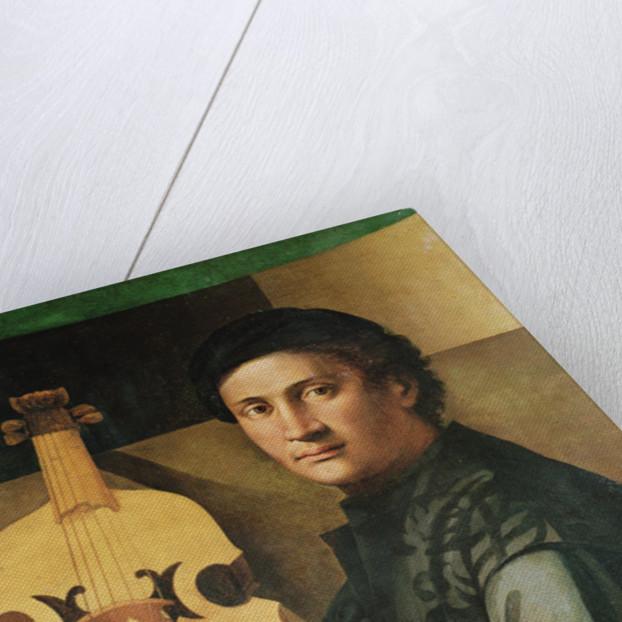 The Viola Player by Paolo Zacchia