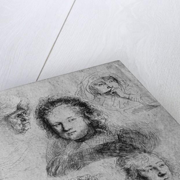 Six heads with Saskia van Uylenburgh in the centre by Rembrandt Harmensz. van Rijn