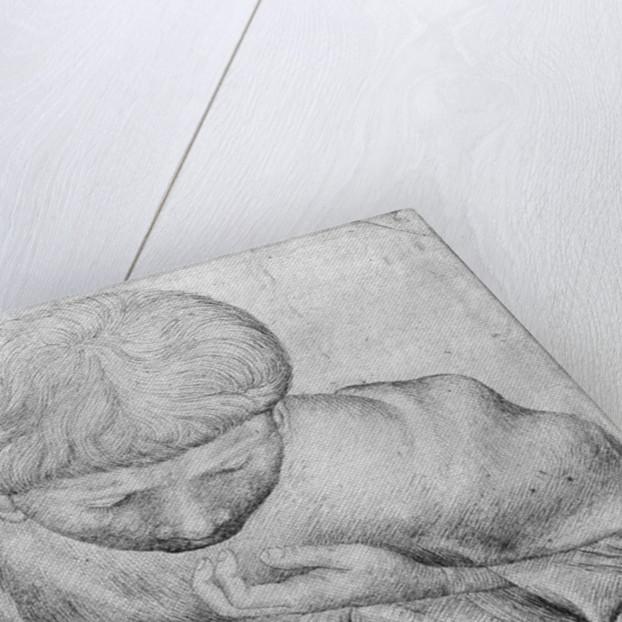 Boy reading by Antonio Pisanello