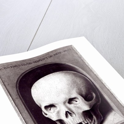 Skull, right hand panel reverse from the Triptych of Earthly Vanity and Divine Salvation by Hans Memling