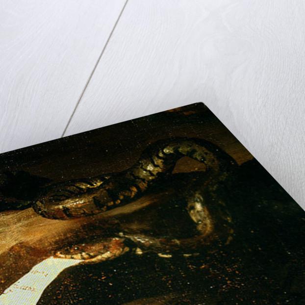 Detail of Drunken Silenus by Jusepe de Ribera