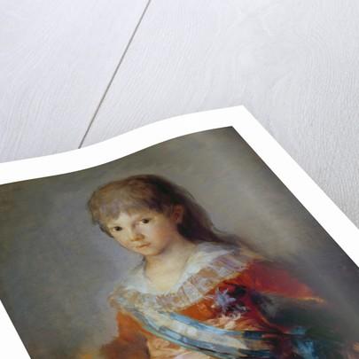 The Infante Francisco de Paula by Francisco Jose de Goya y Lucientes