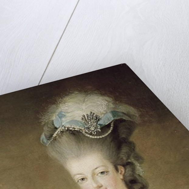 Portrait of Marie Antoinette Queen of France, detail, 1775 by Jean-Baptiste Andre Gautier D'Agoty