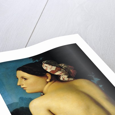 Female nude by Jean Auguste Dominique Ingres