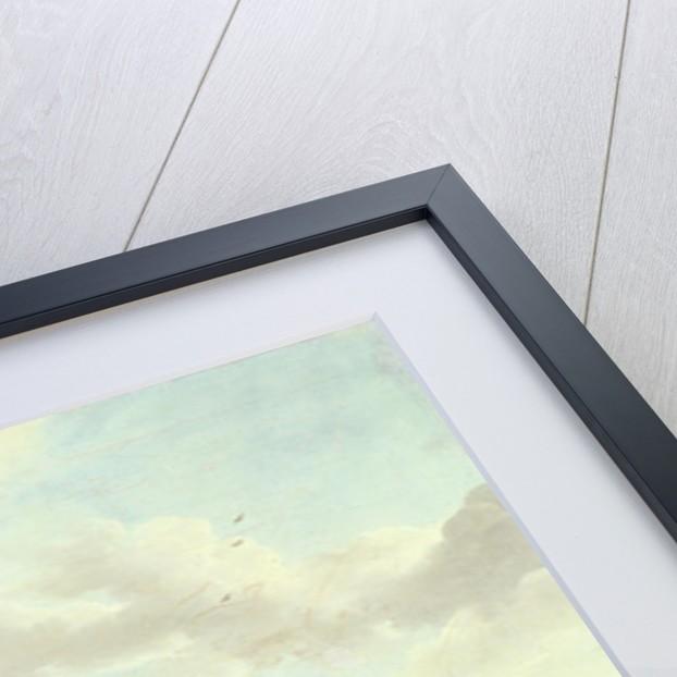 Falconry by Johannes van der Bent