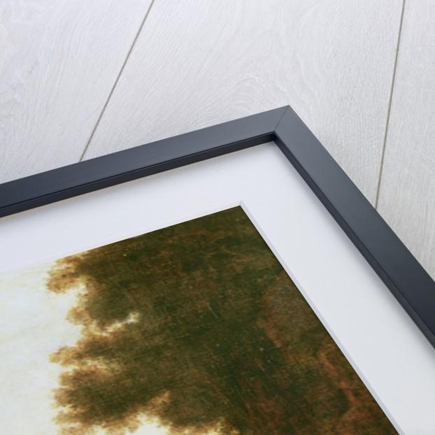 Landscape by Claude Lorrain
