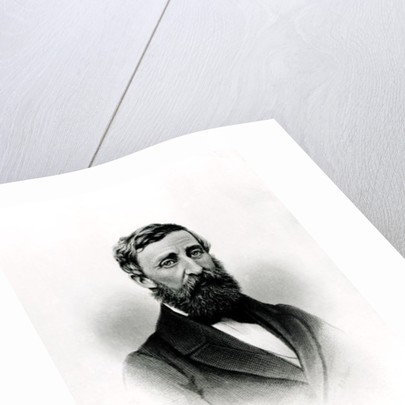 Henry David Thoreau by English School